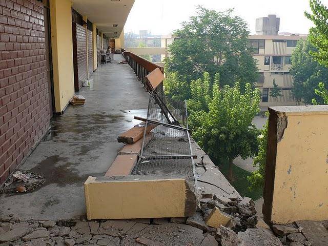 Capital social acciones locales de reconstrucci n for Viveros en nunoa